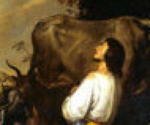 Reflection 102: God Uses the Weak